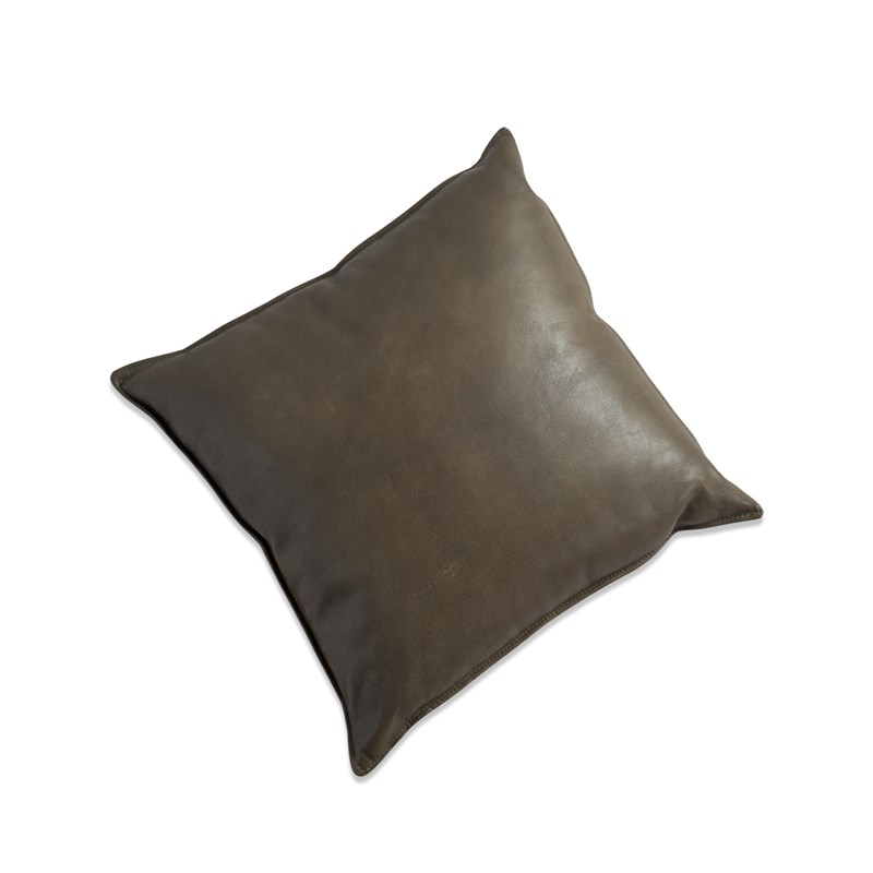 Vasa pillow